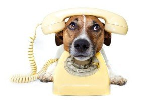 Call Handling Marketing Service